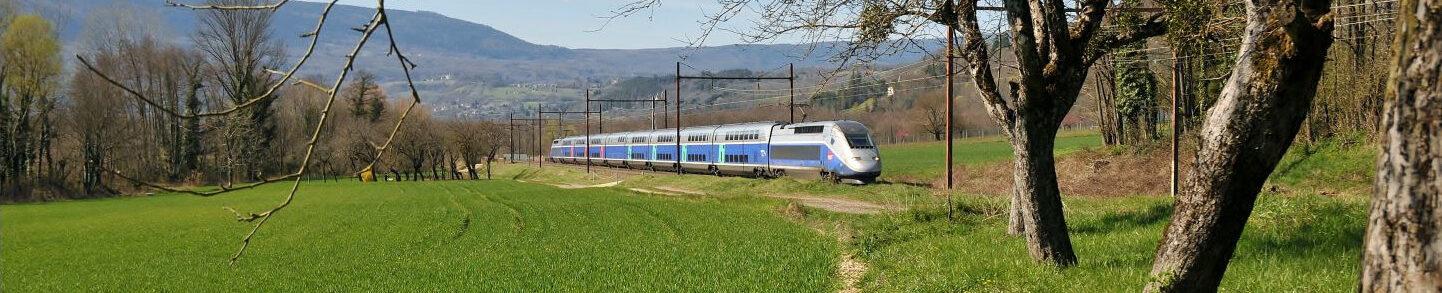 Train et écologie, XIXe-XXIe siècles